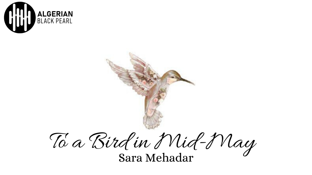 To a Bird in Mid-Day poem