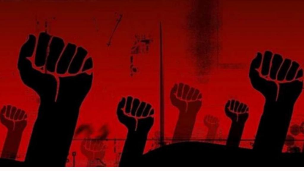 The Algerian Socialist Mindset